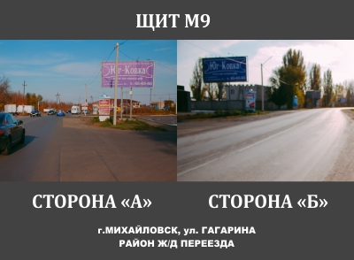 ЩИТ М9